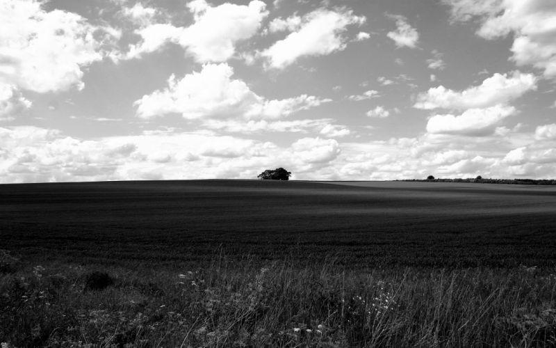 landscapes nature monochrome wallpaper