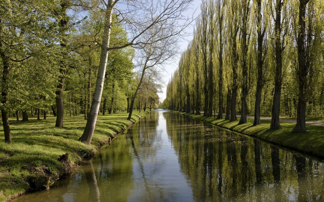 trees forests canal wallpaper