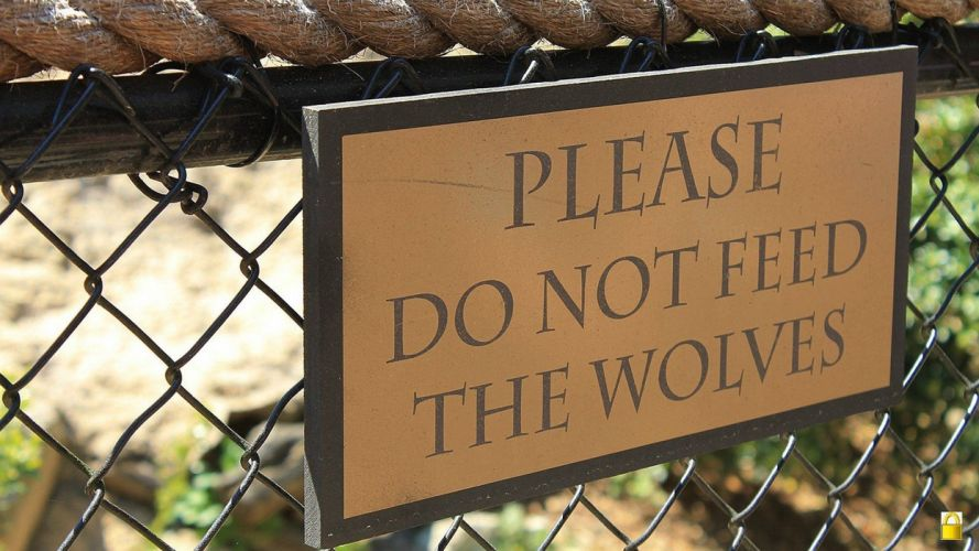 signs funny warning caution advice sign wolves alert wallpaper