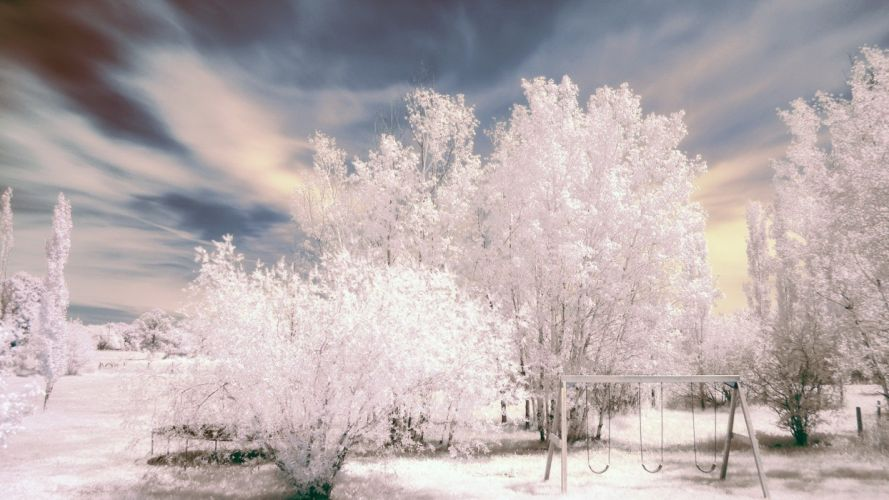 landscapes nature winter trees HDR photography wallpaper