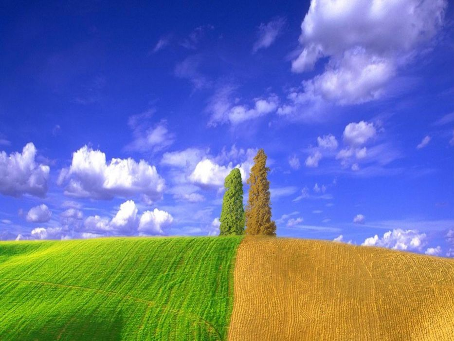 clouds landscapes nature trees wallpaper
