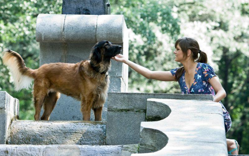 brunettes women models dogs outdoors ponytails blue dress natural lighting wallpaper