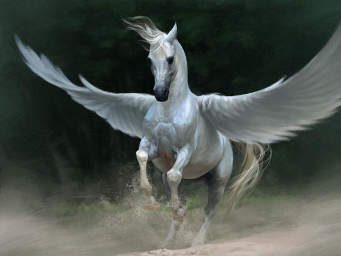 wings fantasy art pegasus wallpaper