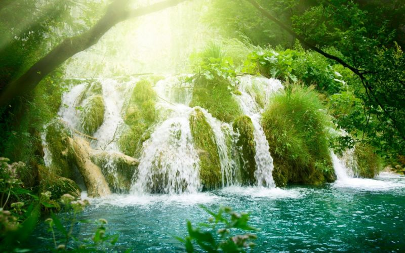 landscapes nature forests waterfalls wallpaper
