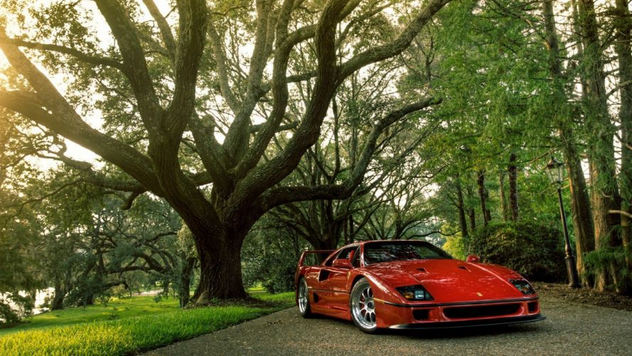 trees cars Ferrari Ferrari F40 wallpaper
