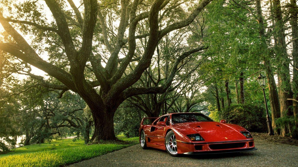 Trees Cars Ferrari Ferrari F40 Wallpaper 1920x1080 273710 Wallpaperup