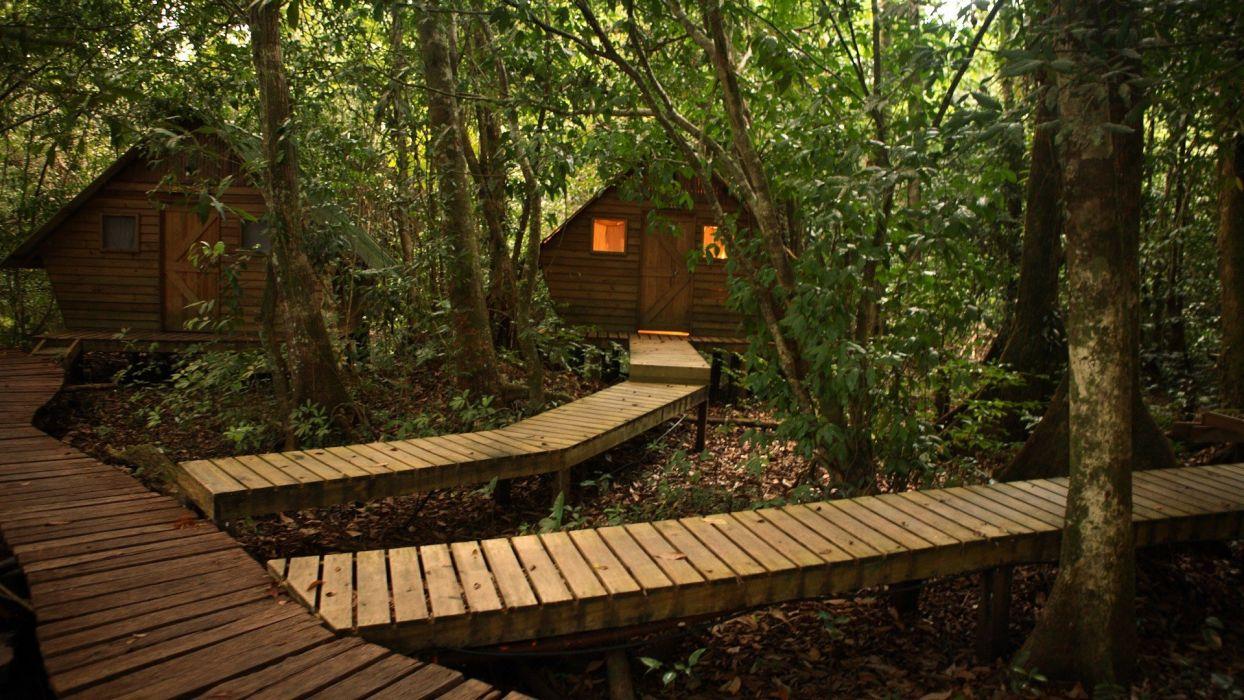 jungle paths planks Guatemala Rio wallpaper