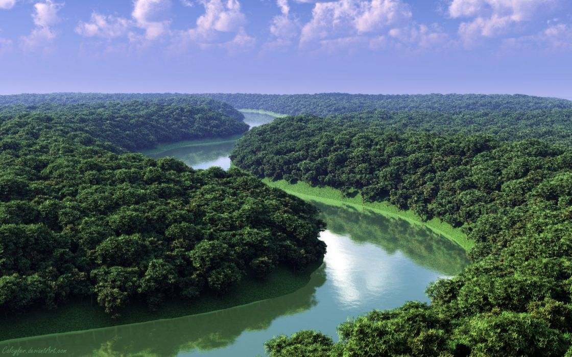 landscapes nature forests rivers wallpaper