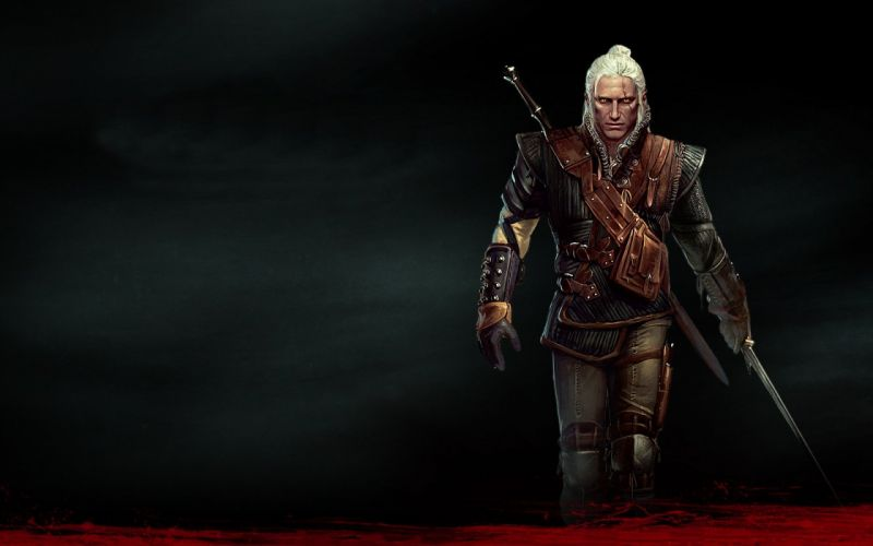 The Witcher Geralt of Rivia The Witcher 2: Assassins of Kings white wolf school of wolf wallpaper