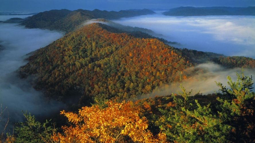 landscapes autumn gap wallpaper