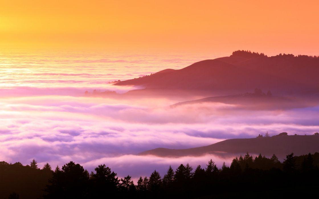 landscapes trees hills fog mist California wallpaper