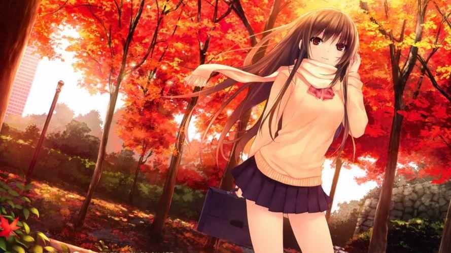 anime Coffee-Kizoku anime girls wallpaper