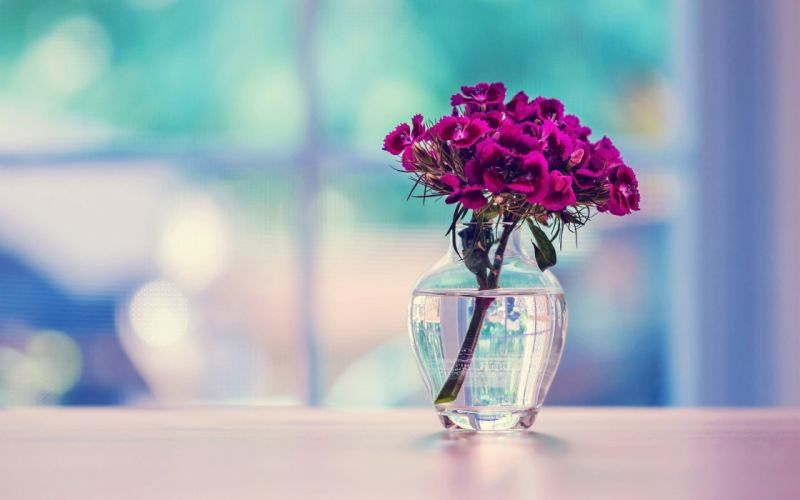 water flowers glass tables wallpaper
