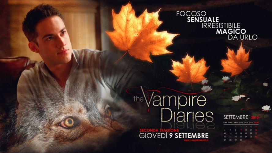 VAMPIRE DIARIES drama fantasy horror television series poster autumn wallpaper