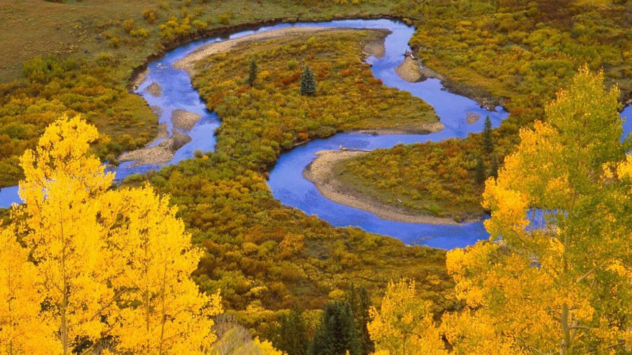 landscapes forests national Colorado rivers marsh creek flood plain wallpaper