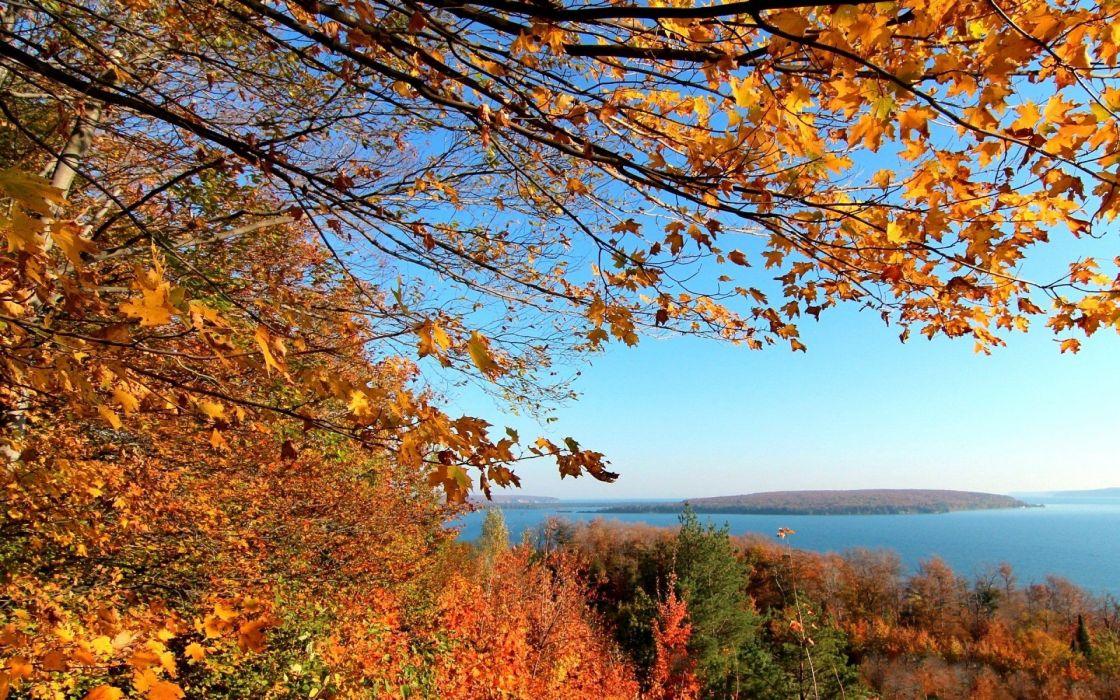 landscapes trees autumn wallpaper