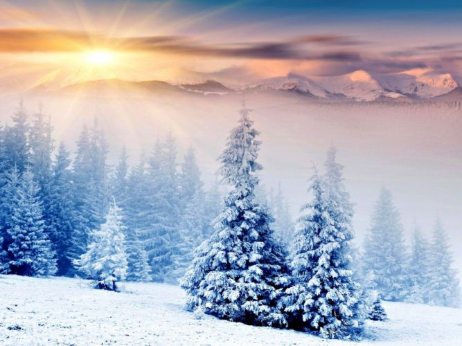 landscapes winter snow trees HDR photography wallpaper