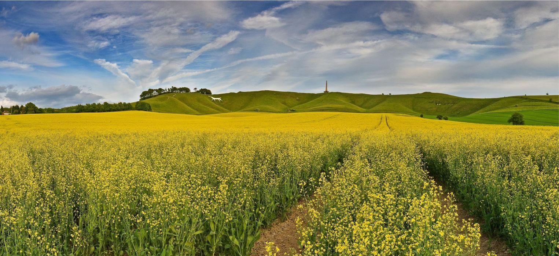 Cherhill White Horse and Obelisk Wiltshire England wallpaper