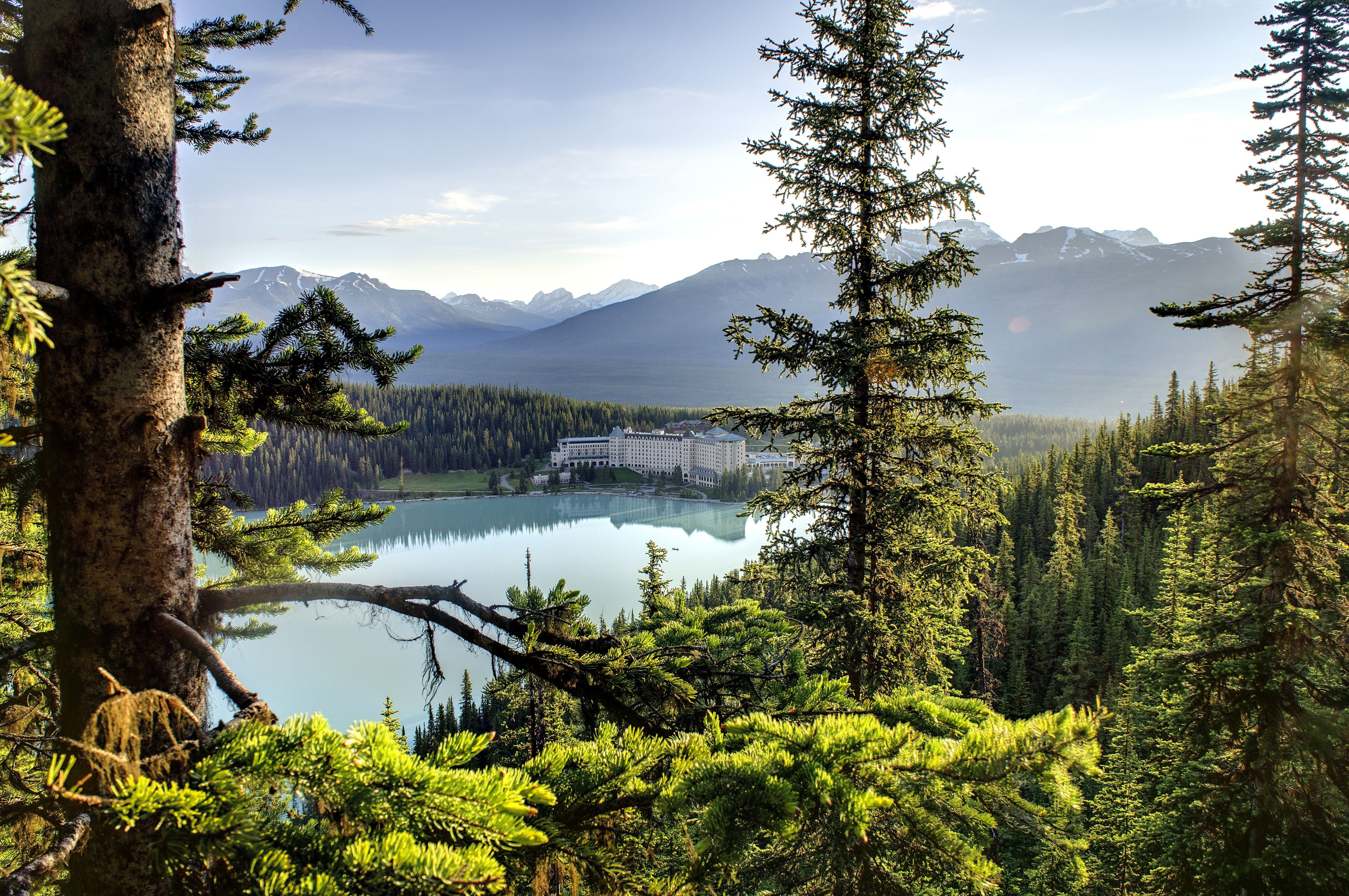 Canadian Forest With Lake