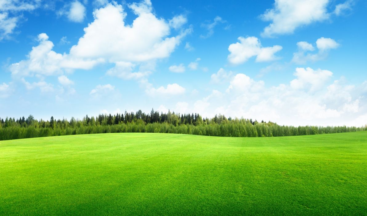 Clouds Trees Field Of Grass Beautiful Nature Landscape Sky