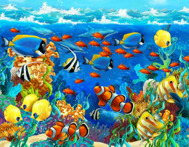 dolphin sea seabed fish corals underwater ocean tropical g wallpaper
