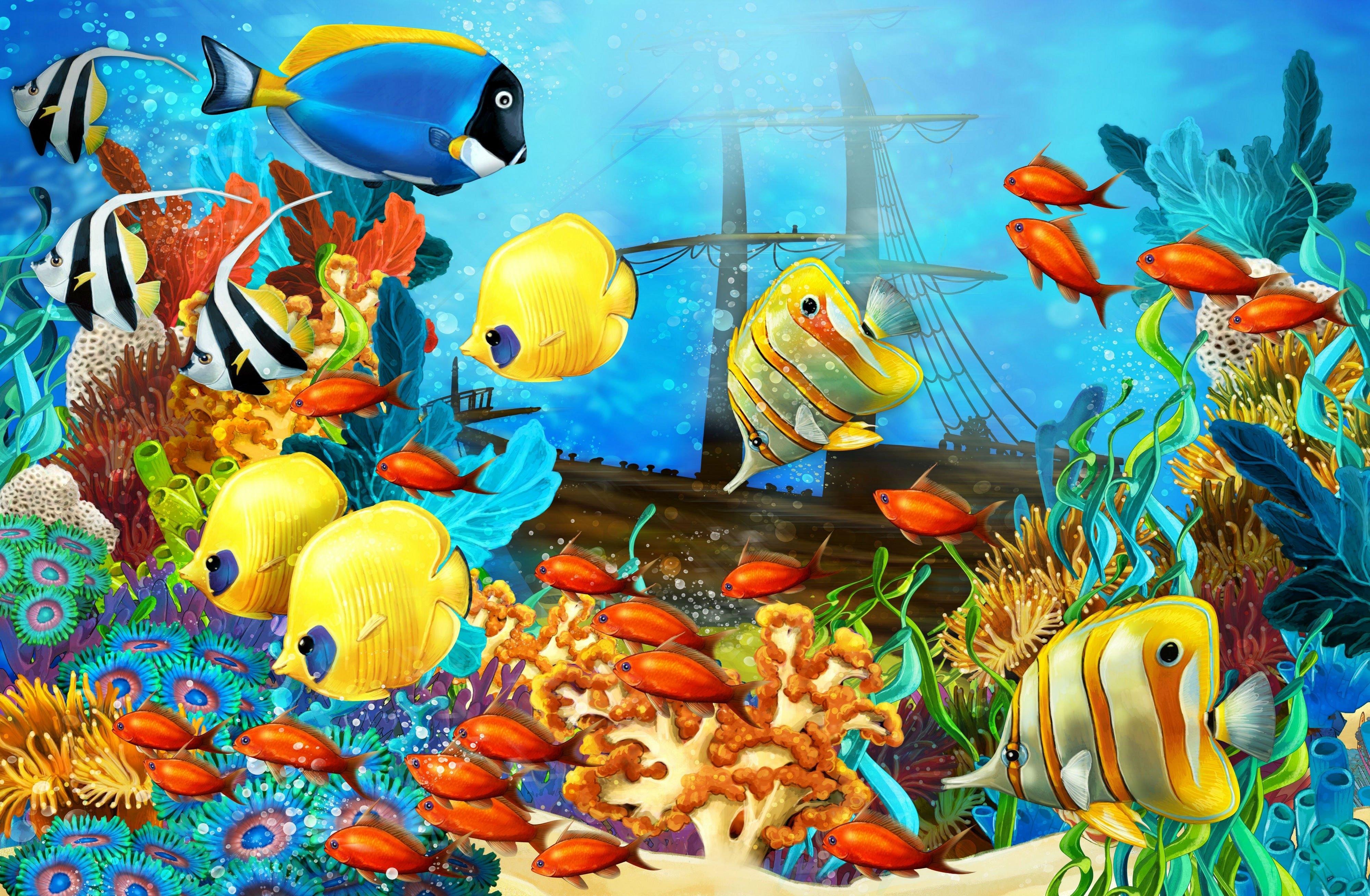 Sea Ocean Fish Fish Corals Underwater Ocean