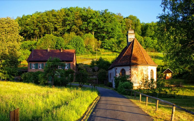 forest road green fence houses summer wallpaper