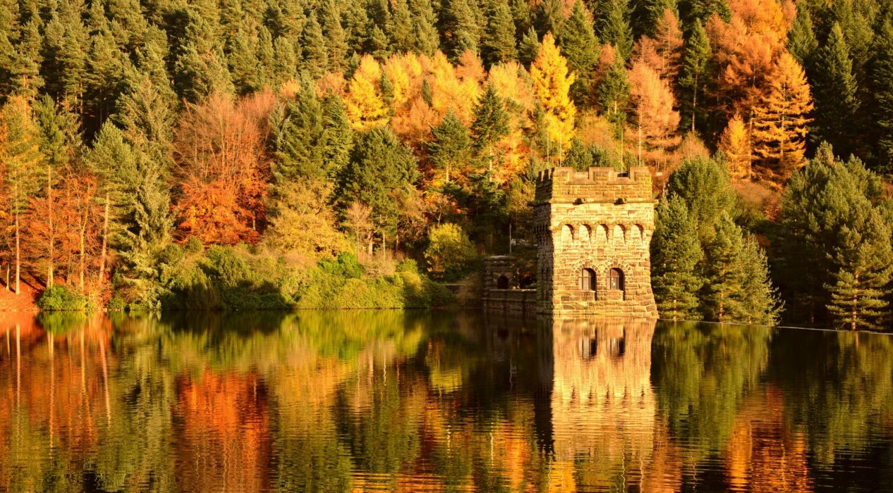 forest trees water reflection autumn nature wallpaper