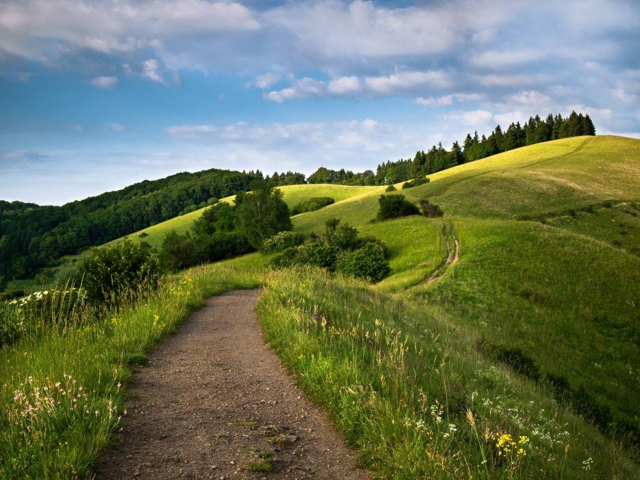 hills road trees landscape wallpaper