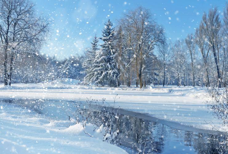 landscape nature sky trees winter christmas wallpaper