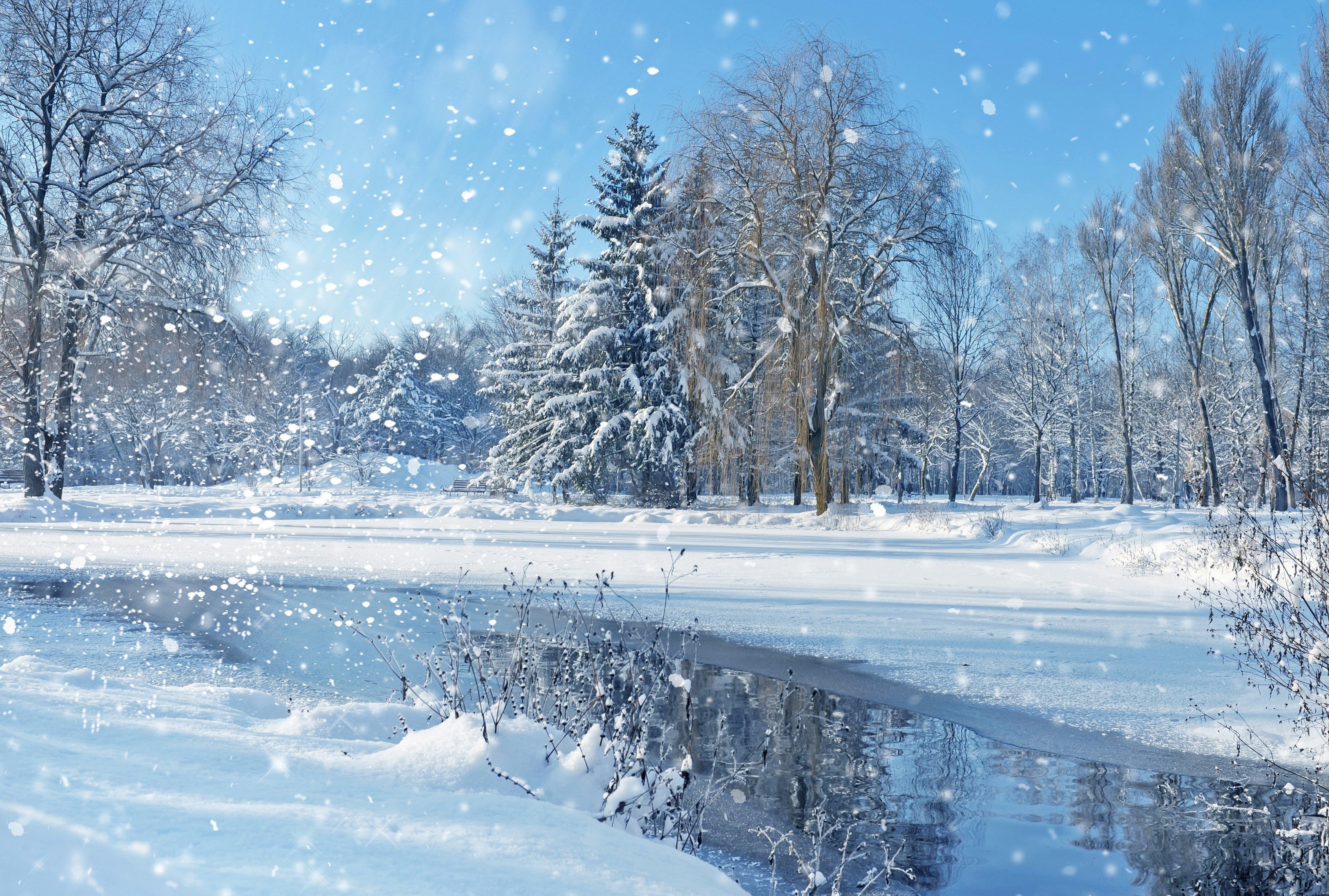 Landscape nature sky trees winter christmas wallpaper - Christmas nature wallpaper ...