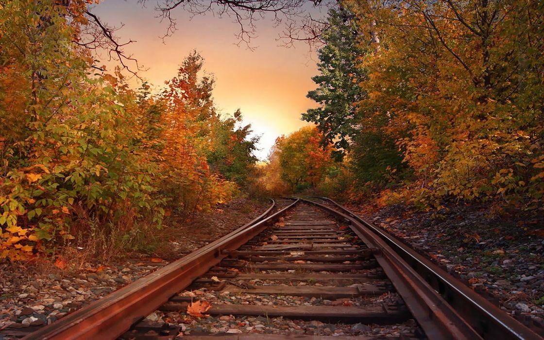 landscapes nature trees autumn skylines railroad tracks wallpaper