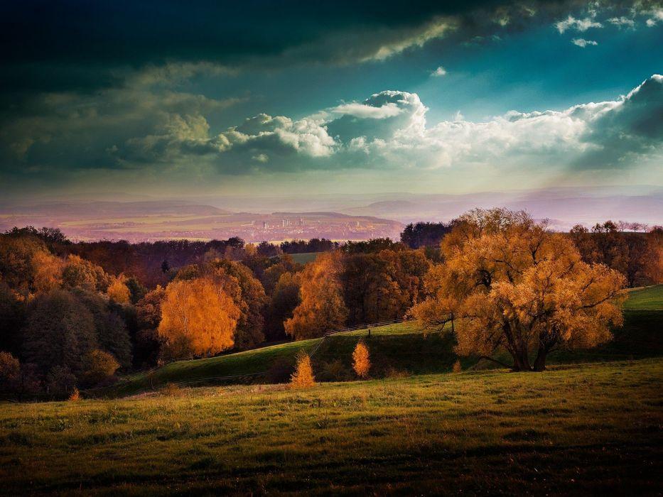 landscapes nature trees autumn yellow sunlight wallpaper