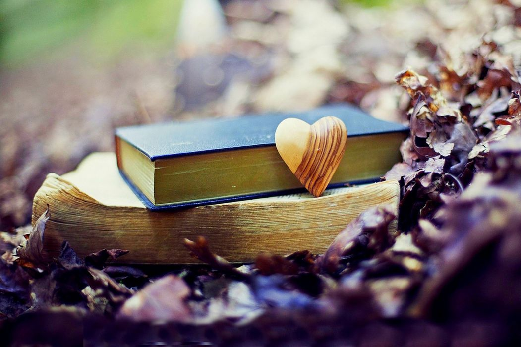 nature forest old book leaves park heart love fall autumn bokeh mood wallpaper