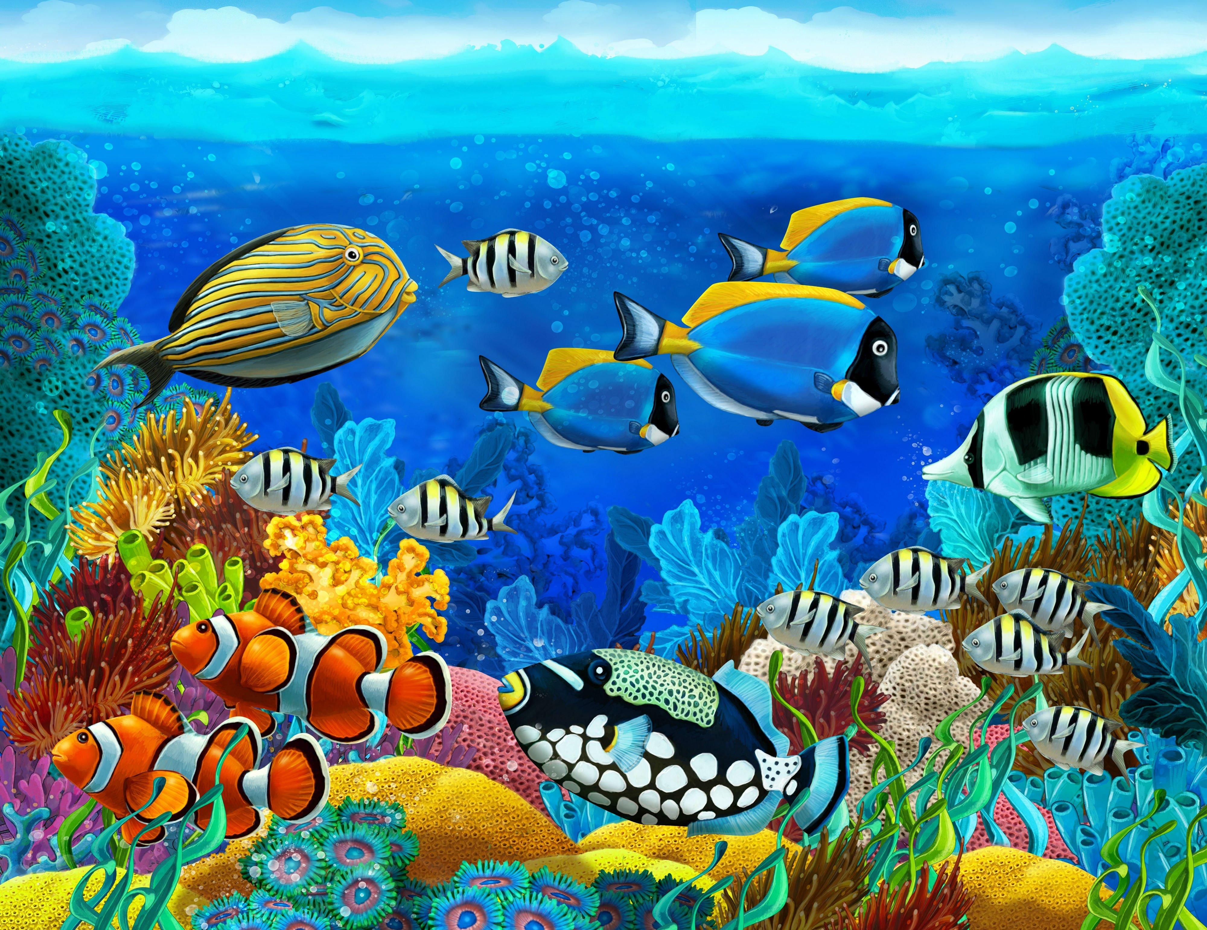 Sea Seabed Fish Corals Underwater Ocean Tropical G Wallpaper