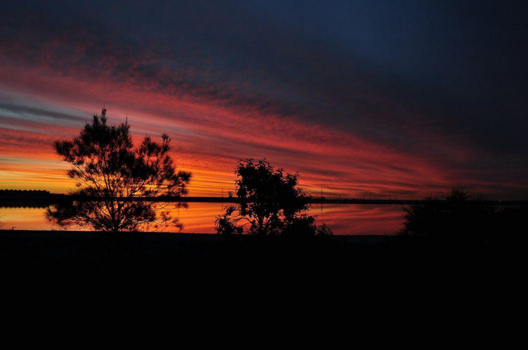 sunset trees dusk lake silhouette wallpaper