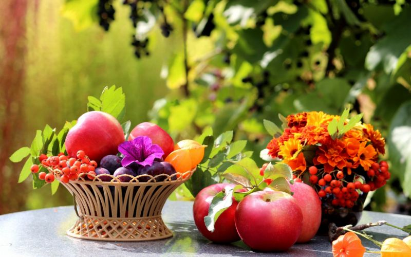 table apples fruit plums basket wallpaper