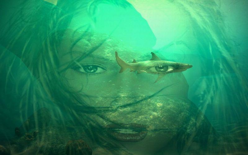 underwater fantasy face shark mood mermaid wallpaper