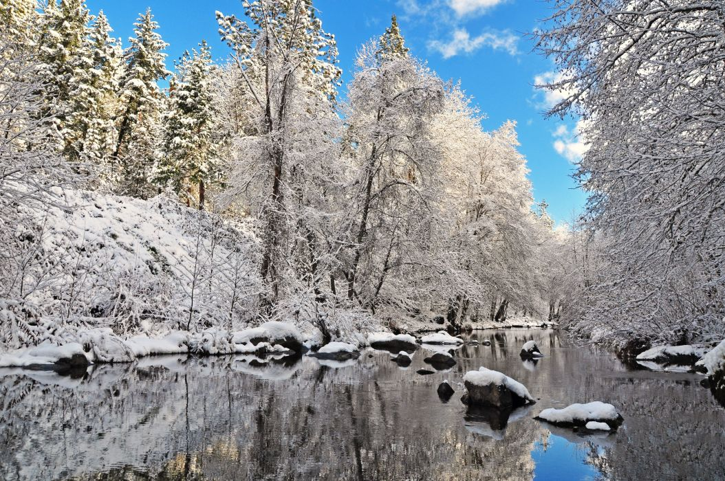 winter river trees forest landscape reflection wallpaper