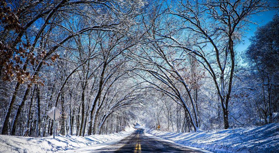 winter road trees landscape wallpaper