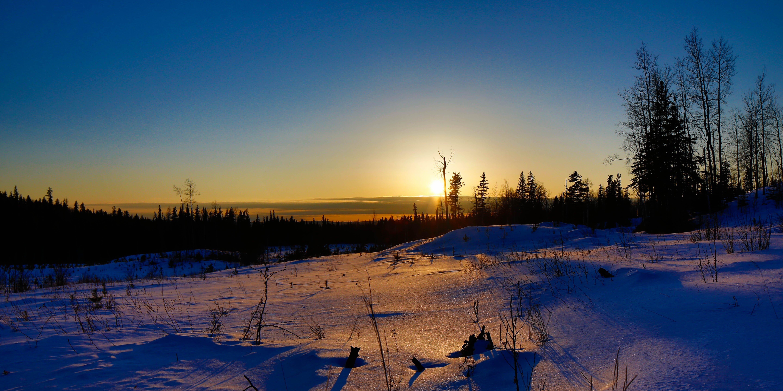 winter sunset field trees landscape wallpaper