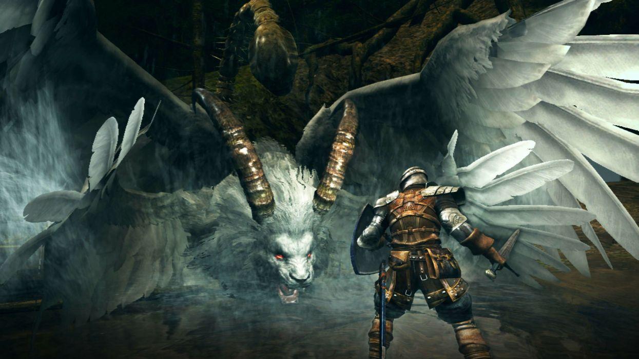 Dark Souls Prepare to Die fantasy warrior (19) wallpaper