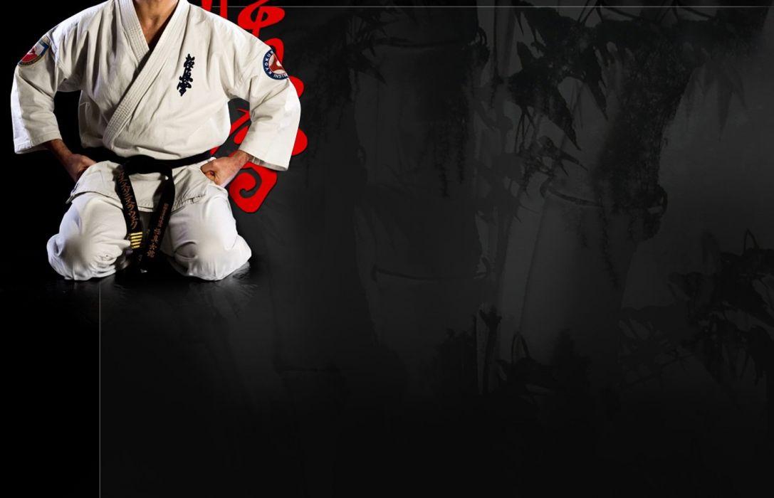 kyokoshin karate wallpaper