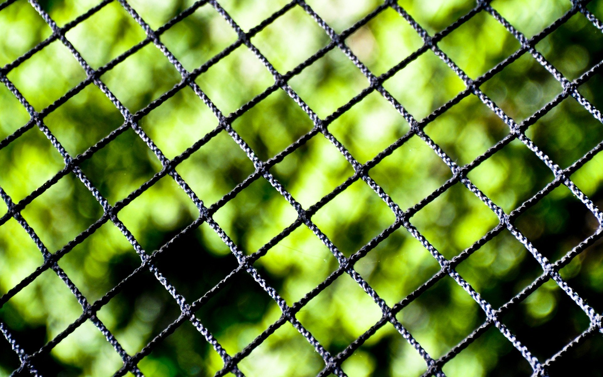 Close Up Nature Fences Chain Link Fence Blurred Background Wallpaper