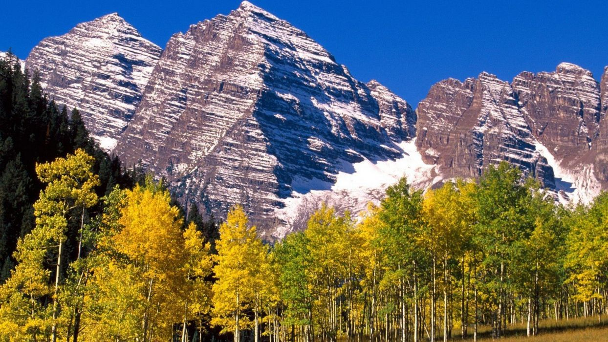 mountains landscapes white forests national Colorado bells wallpaper