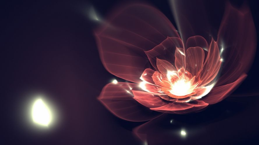 abstract dark flowers particles wallpaper