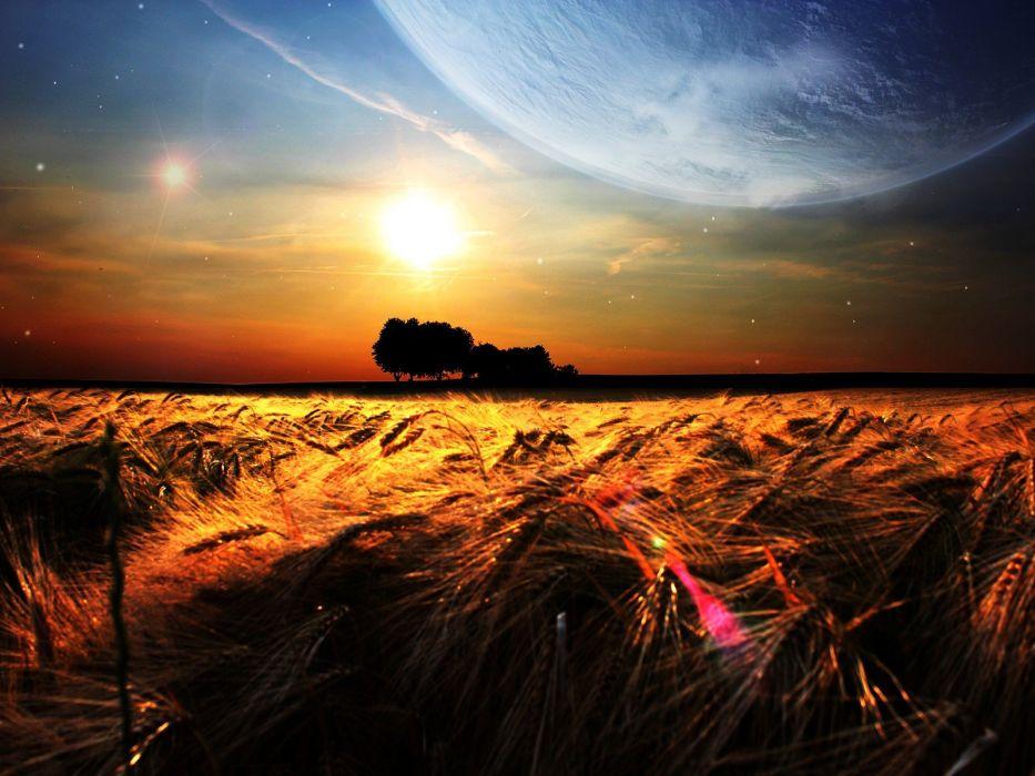 nature fields wheat photo manipulation wallpaper