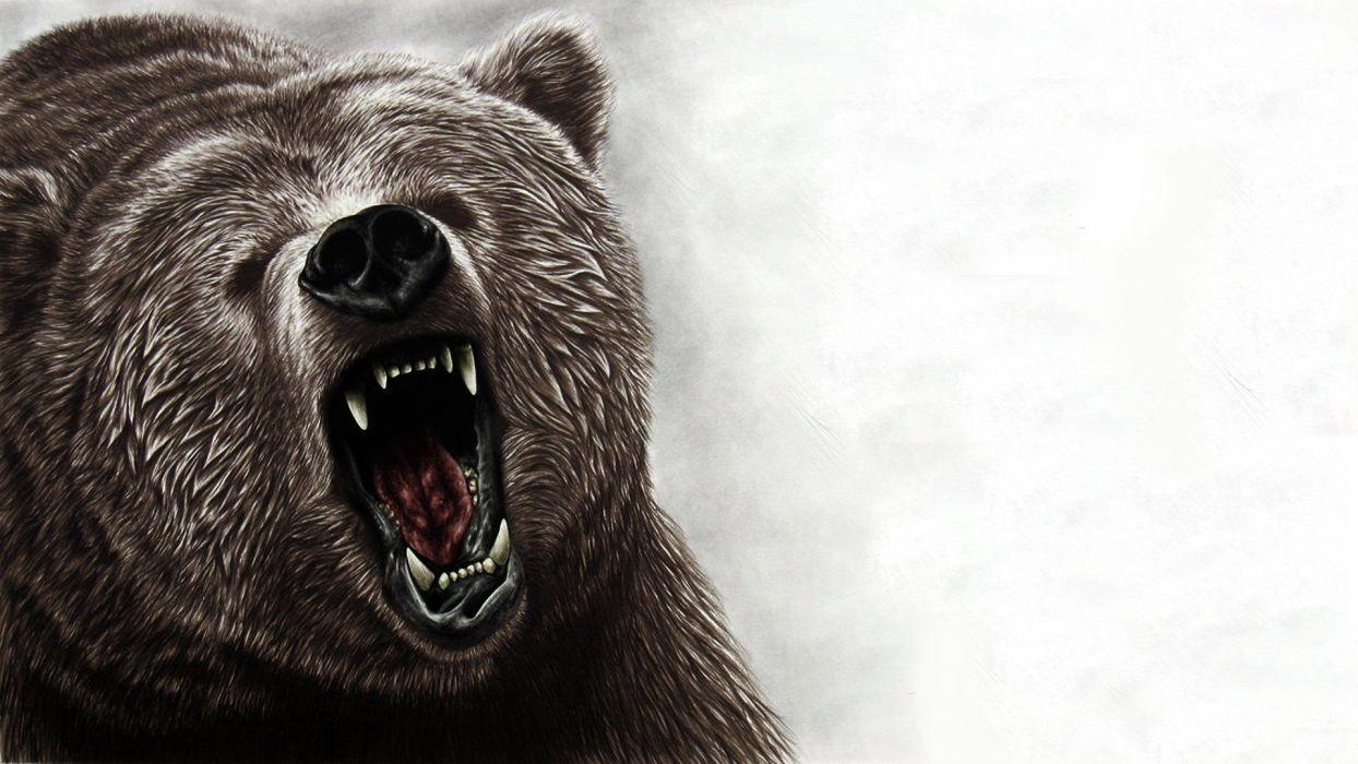 animals artwork bears roar wallpaper