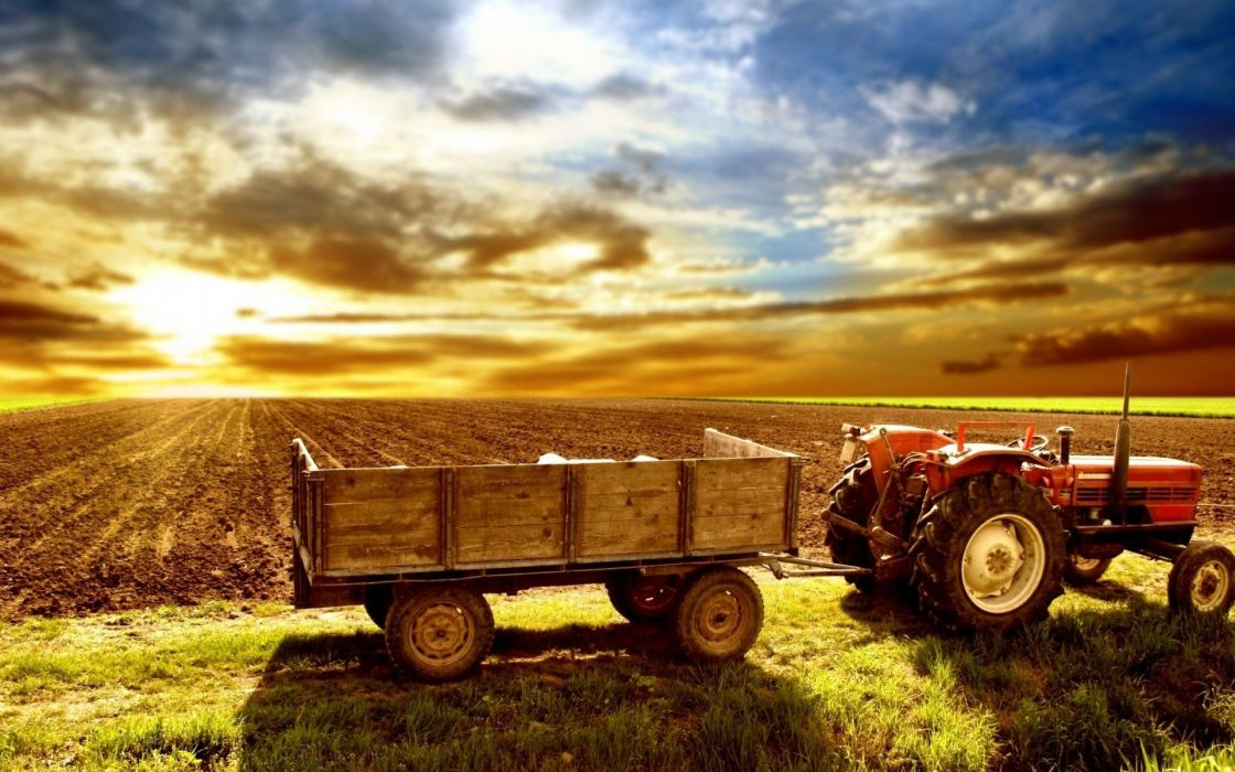 sunrise nature tractors wallpaper
