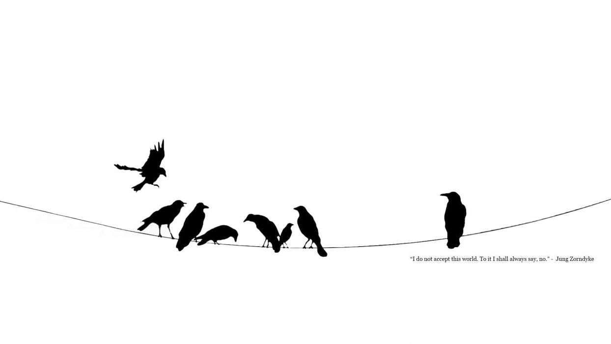 black and white minimalistic quotes power lines crows ravens wallpaper